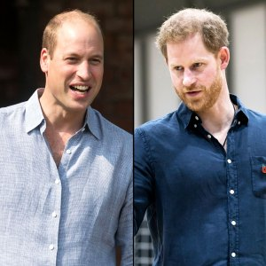 Princes William Harry Need to Put in the Effort Rebuild Their Relationship