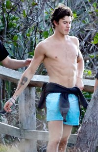 Shawn Mendes Goes Shirtless Australia Beach With Friends