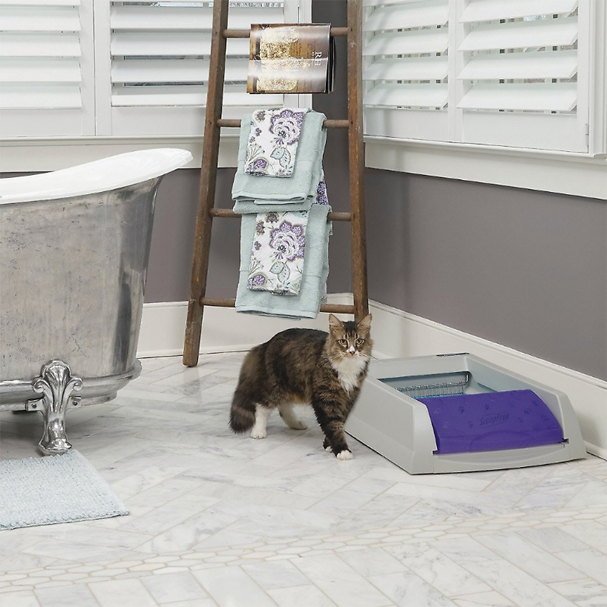 PetSafe ScoopFree Original Automatic Cat Litter Box