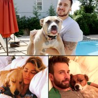 Celebs Whose Dogs Helped Them Through Dark Times