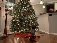 Deena Nicole Cortese and Chris Buckner Celebrity Kids Helping Pick and Decorate Christmas Trees