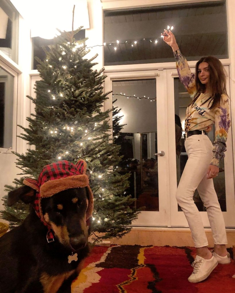 Emily Ratajkowski Puts Her Adorable Dog Colombo in Winter Hat