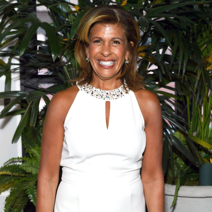 Hoda Kotb's Daughter Hope Crawls for the 1st Time in New Video