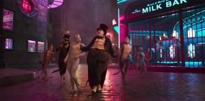James Corden Admits He Hasn't Seen the New 'Cats' Movie Yet