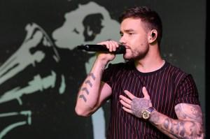Liam Payne Album Review