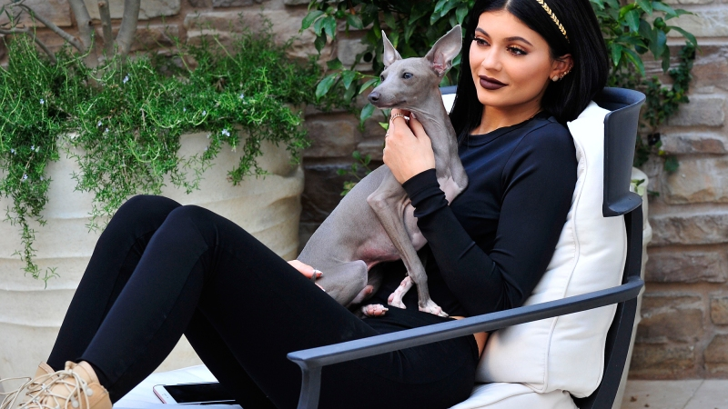Norman! Sushi! Honey! A Guide to the Kardashian-Jenner Family's Dogs