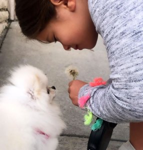 Teddi Mellencamp Forgives Facility Where Family Dog Died Unexpectedly