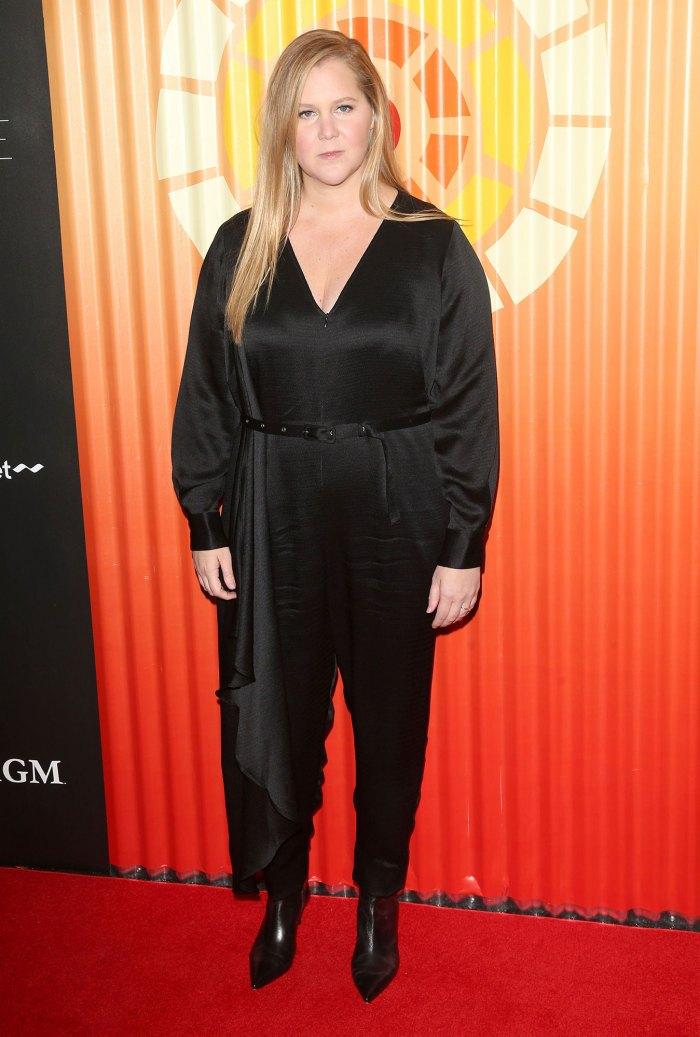 Amy Schumer Run Down After IVF Wearing Rachel Comey
