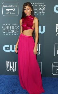 Critic's Choice Awards 2020 - Zendaya