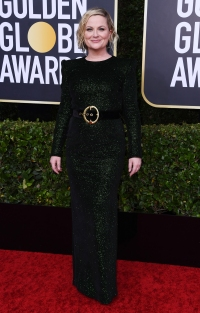 Golden Globes 2020 - Amy Poehler