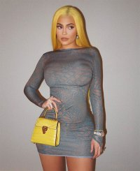 Kylie Jenner Matches Her Hair to Her Handbag