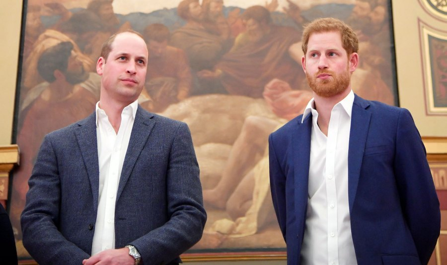 Prince William and Prince Harry Issue Rare Joint Statement