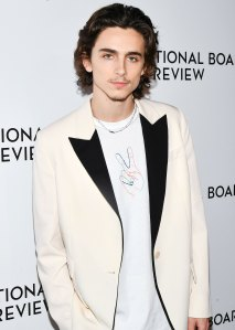 Timothee Chalamet Hits the Red Carpet Wearing a Shirt Designed by a Fan: 'I Couldn't Believe It'
