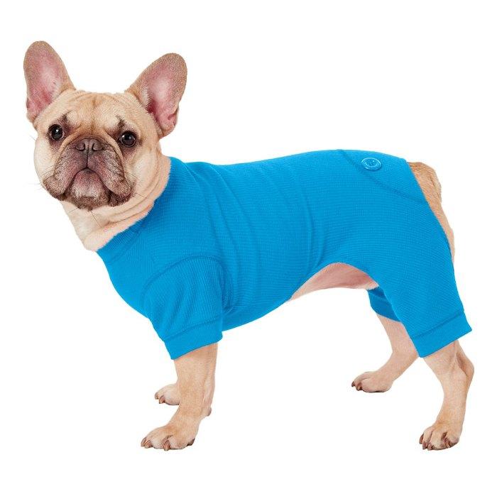 dog-onesie-pj