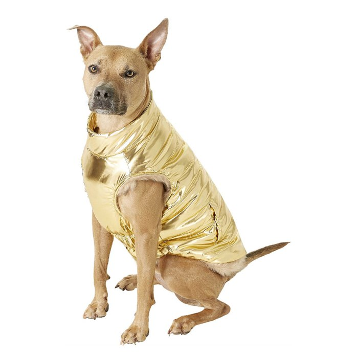 dog-puffer-coat