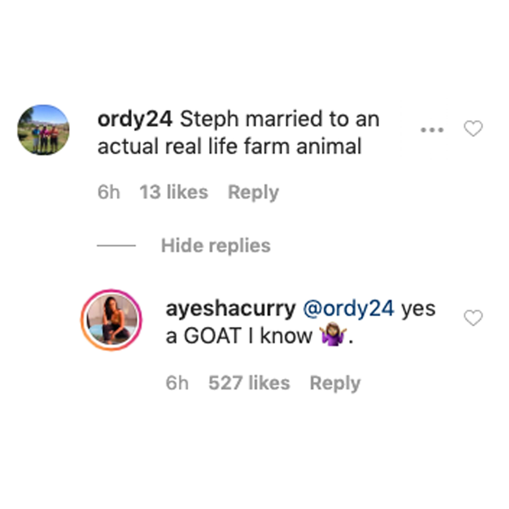 Ayesha Curry Claps Back at Troll Who Called Her a 'Farm Animal' After Viral Photo With Stephen Curry