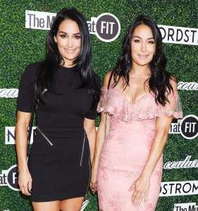 Pregnant Nikki Bella and Brie Bella Reveal They Conceived Their Babies in the Same Place