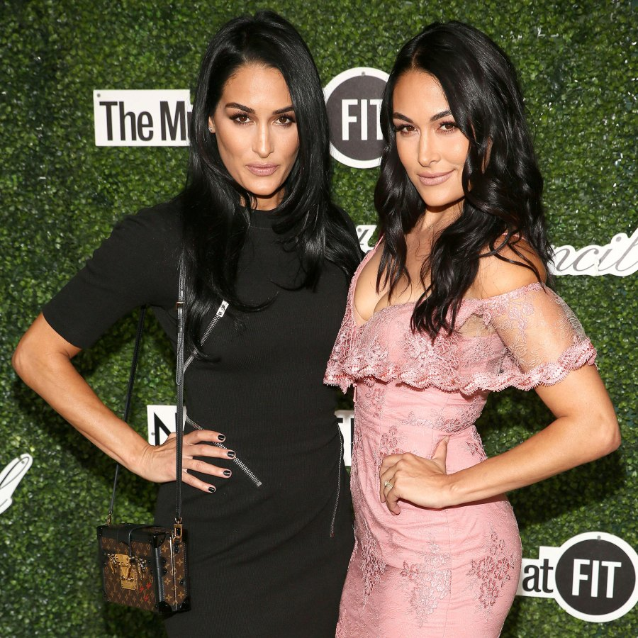 Brie Bella and Nikki Bella Couture Council Award Luncheon Did Not Plan on Being Pregnant Together