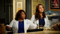 Greys Anatomy Chandra Wilson Camilla Luddington