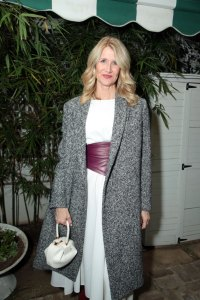 Laura Dern attends the CAA Pre-Oscar Party