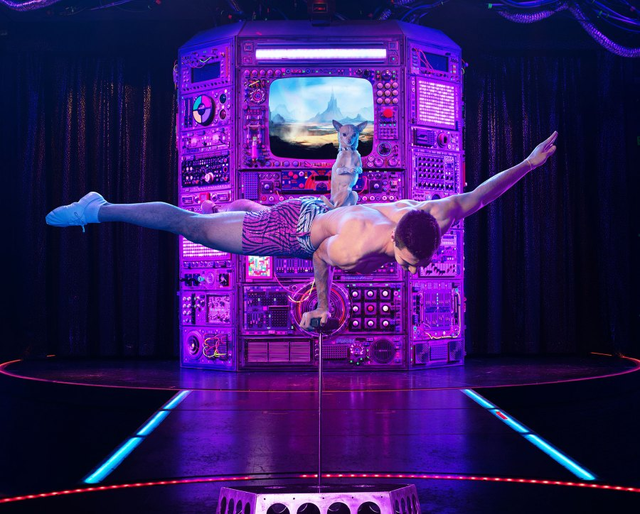Buzzzz-o-Meter Opium Adults Only Vegas Show