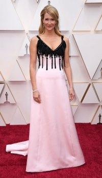 Oscars 2020 Arrivals - Laura Dern