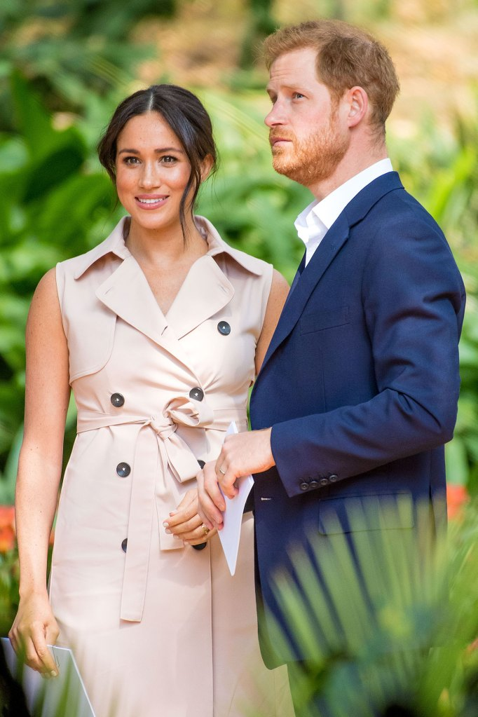 Prince Harry, Meghan Will Lose Support Network