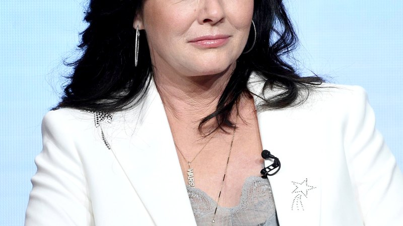 'Beverly Hills, 90210' Alum Shannen Doherty's Cancer Battle in Quotes