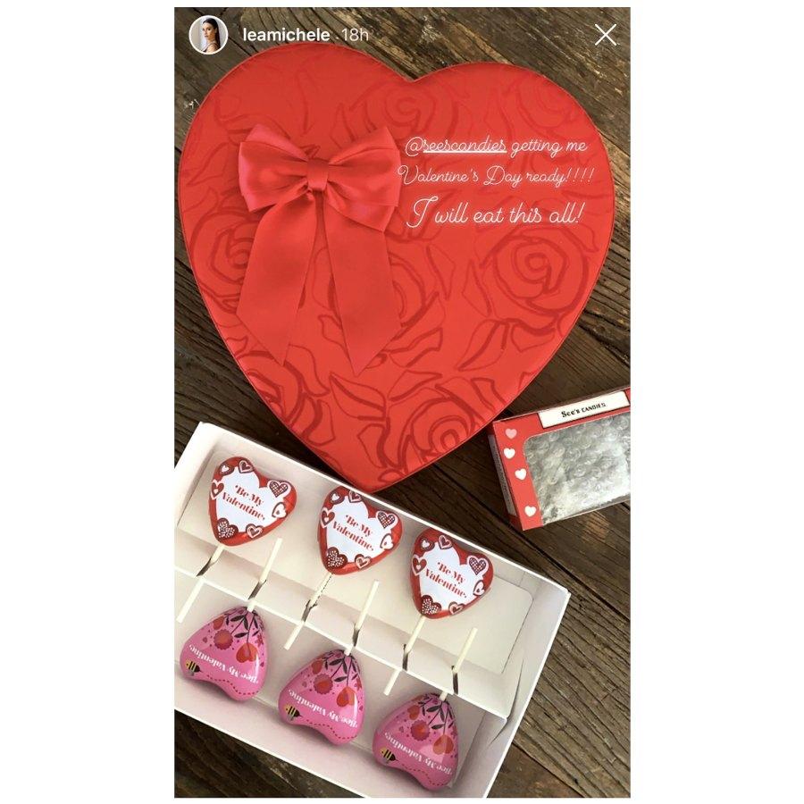 Lea Michele Stars Celebrate Valentines Day