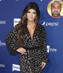 Teresa-Giudice-and-Her-Daughters-Had-Very-Different-Reactions-to-Joe-Giudice-Moving-On