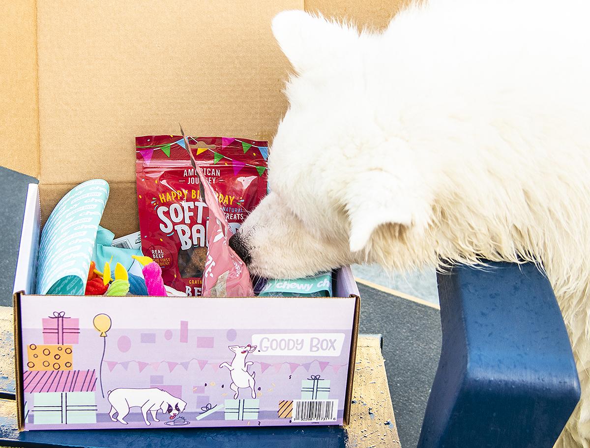 Birthday Goody Box