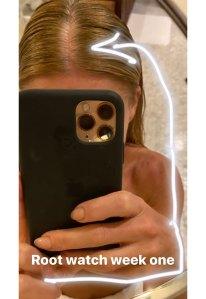 Kelly Ripa Starts 'Root Watching' During Self-Quarantine