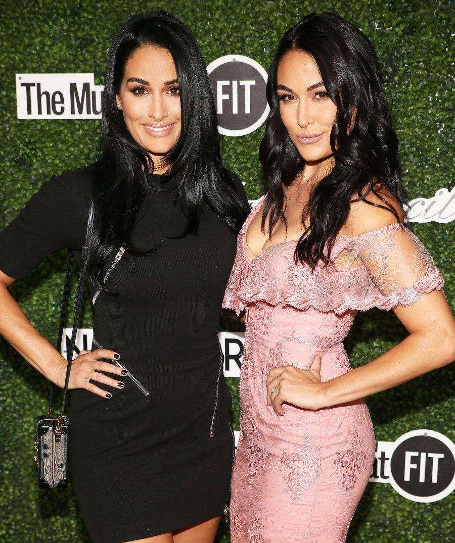Nikki and Brie Bella Twinning Baby Bumps In Bikinis