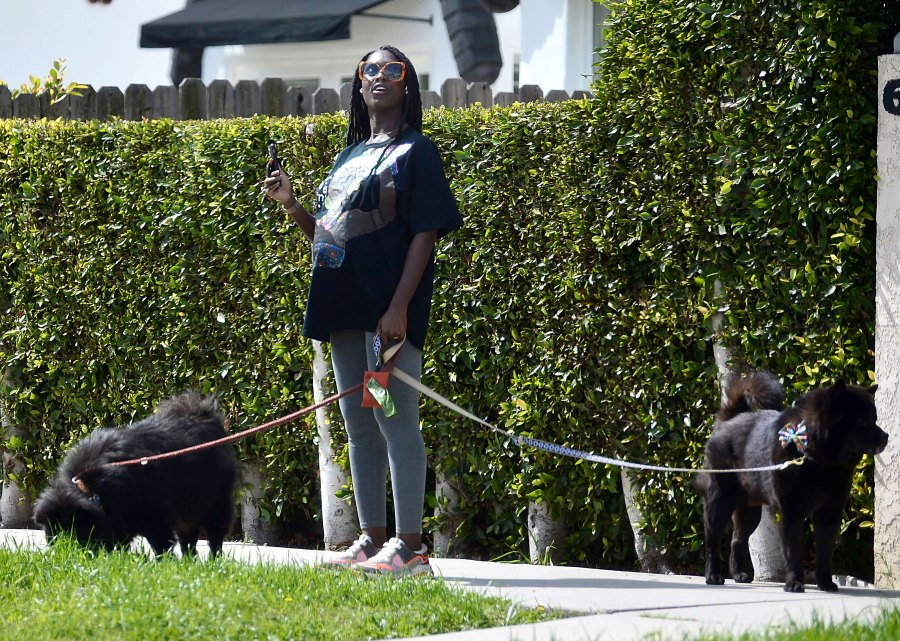 Pregnant Jodie Turner-Smith Walks Dog 2 Weeks Ahead Due Date
