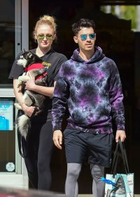 Pregnant Sophie Turner Covers Baby Bump With Puppy While Out With Joe Jonas