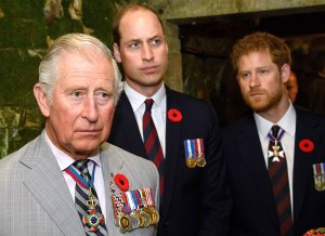 Prince Charles Called Harry William After Coronavirus Diagnosis
