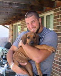 Bronco Tim Tebow and Demi-Leigh Nel-Peters Welcome Three New Puppies