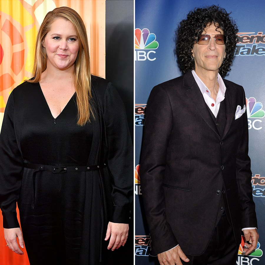 6 Revelations From Amy Schumer Howard Stern Interview