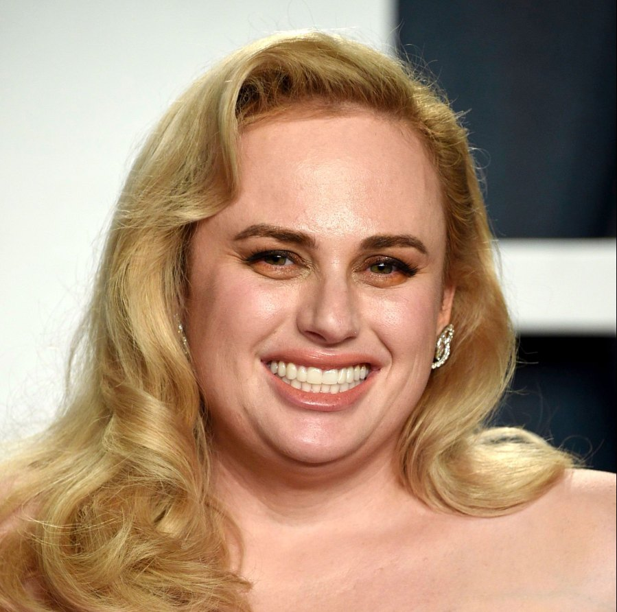 Rebel Wilson Celebs Youd Never Guess Have Law Degrees