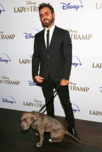 Fancy Dinners Justin Theroux Has Had With His Dog in Quarantine