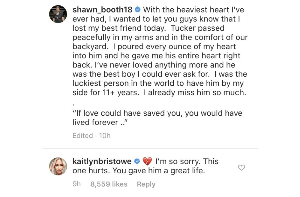 Kaitlyn Bristowe Sends Love to Ex-Fiance Shawn Booth After His Dog Tucker Dies 2