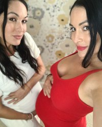 Pregnant Nikki and Brie Bella Give Bump Update Instagram
