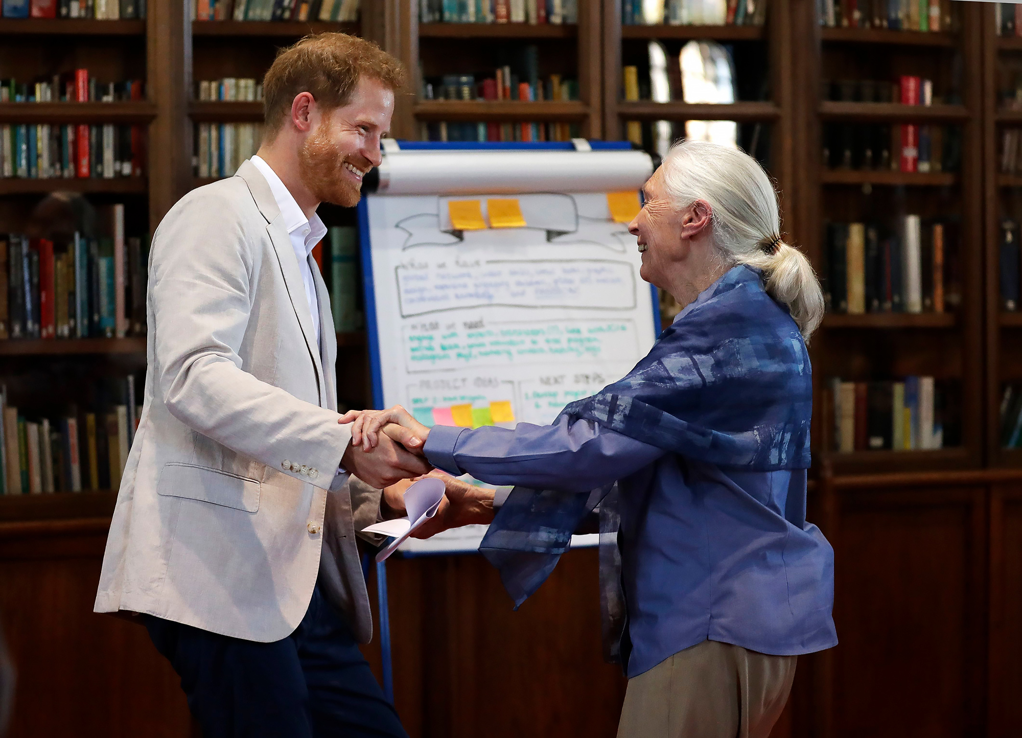 Prince Harry Is Finding Life a Bit Challenging in Los Angeles Jane Goodall p