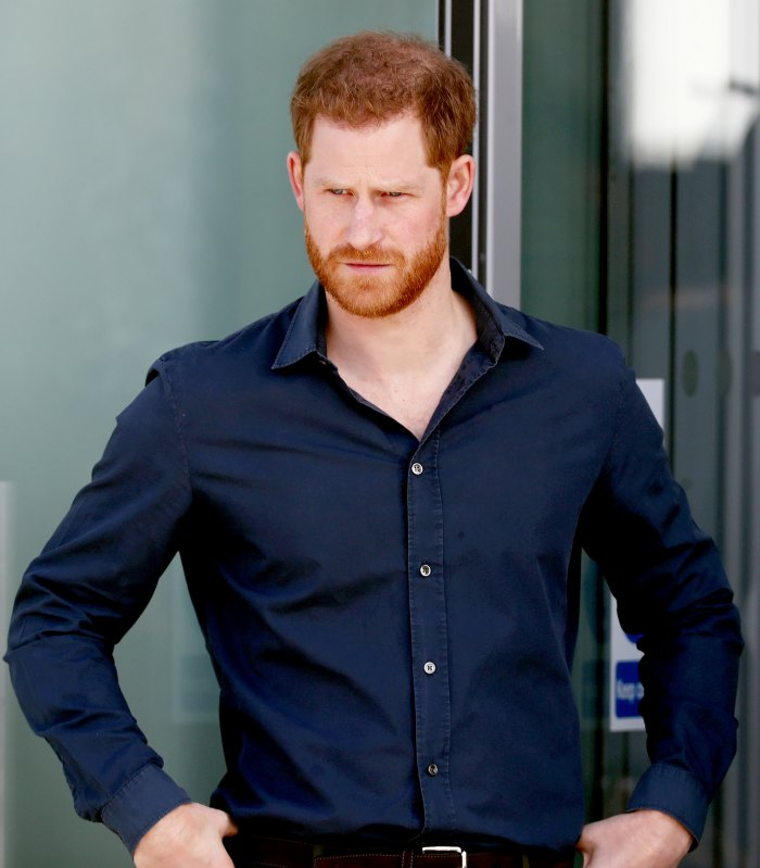 Prince Harry Loses Royal Title and Surname in New Travalyst Documents