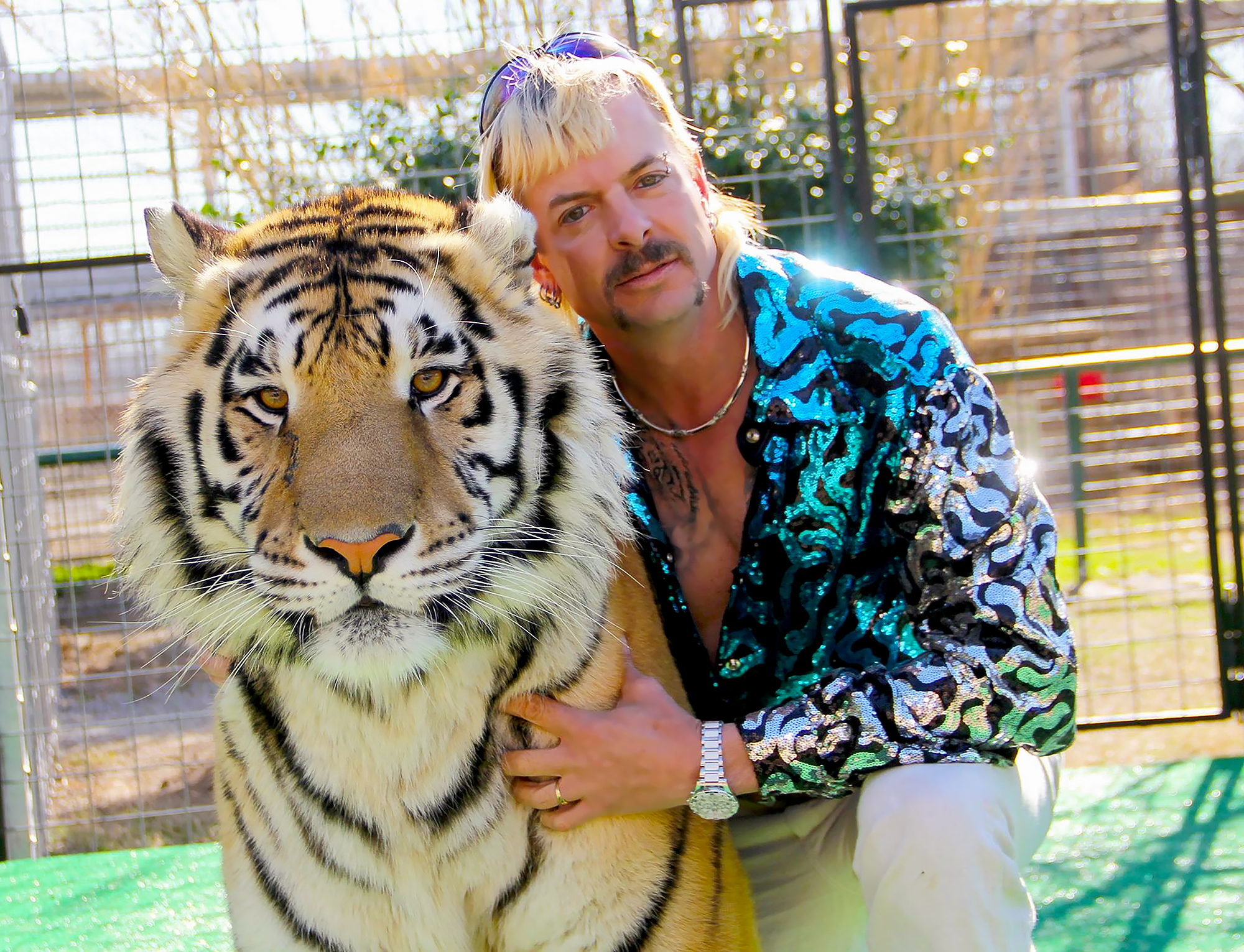 Nicholas Cage to Play Tiger King Joe Exotic 2