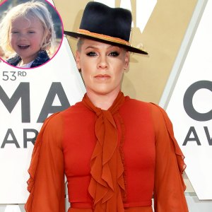 Pink Learned Her Son Has Bad Food Allergies After COVID-19 Blood Tests