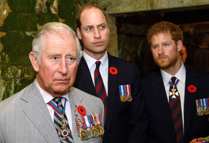 Prince Harry Is Back in Touch With Prince William After Prince Charles Coronavirus Battle