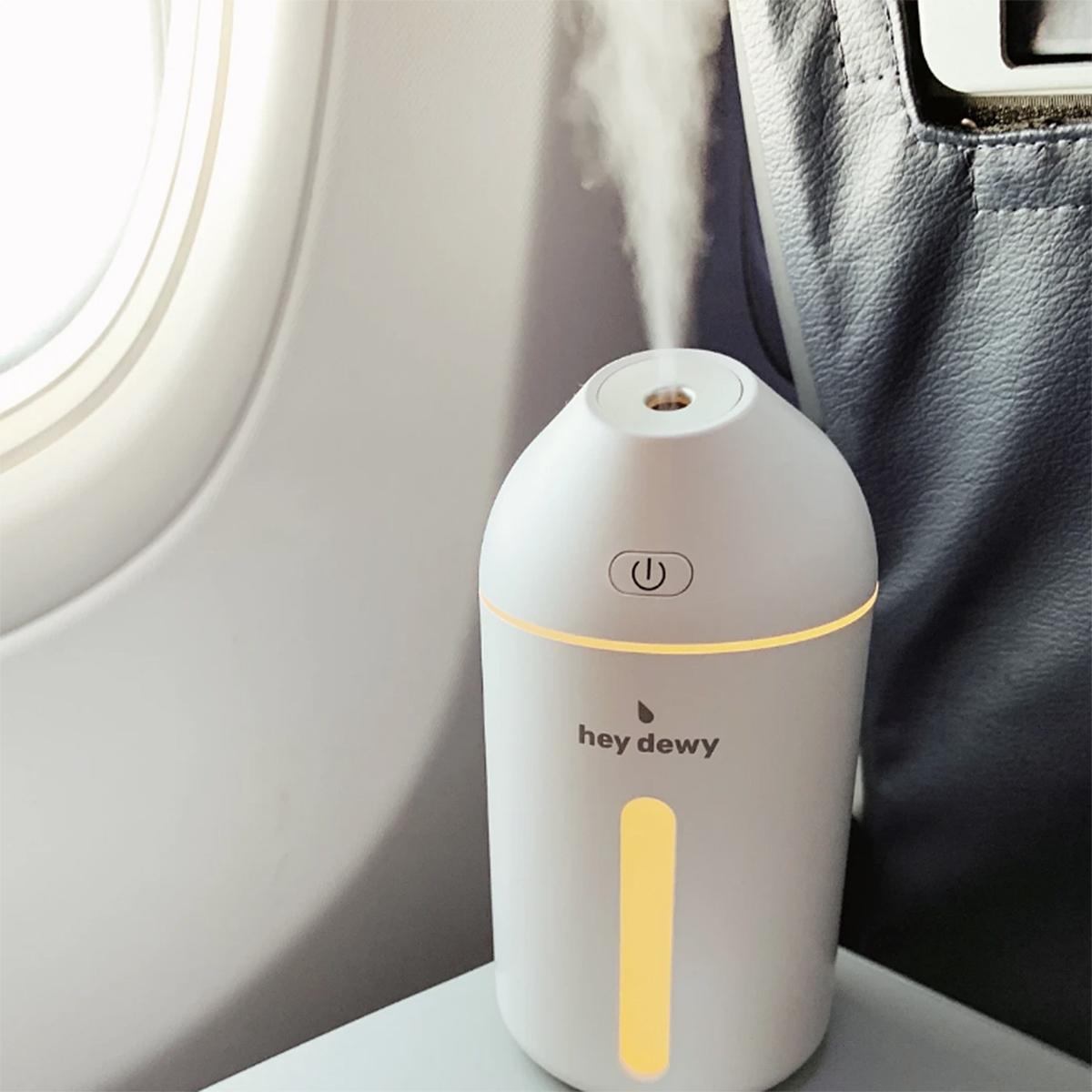 Hey Dewy Portable Facial Humidifier