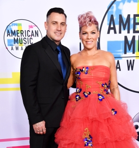 Pink Honors Rosa Parks While Protesting With Husband Carey Hart