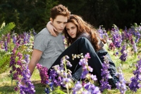 Robert Pattinson Kristen twilight where are they now